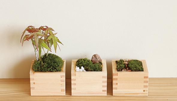 枡で作る日本庭園